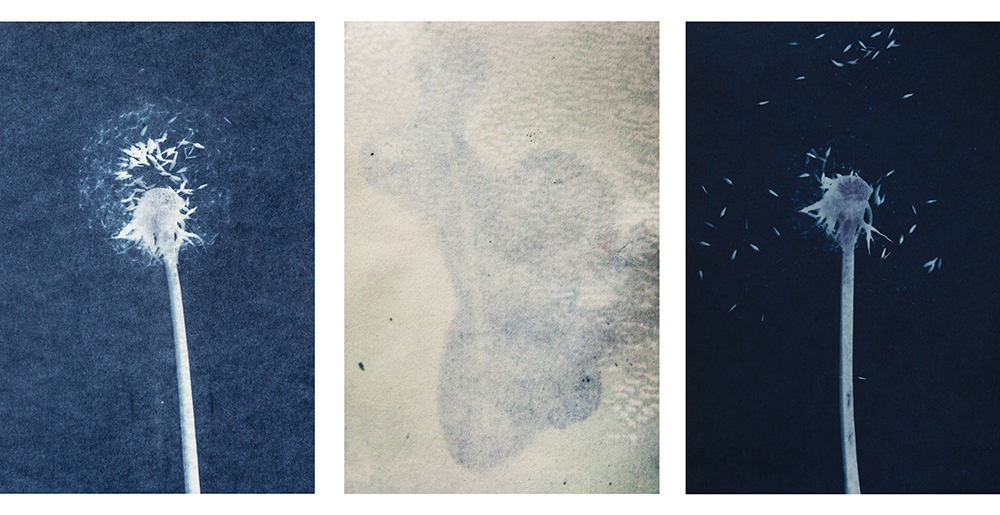 Cyanotype time research photography philosophy