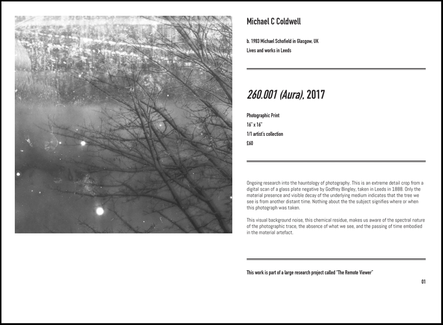 Michael C Coldwell exhibition artist photographer research practice The Remote Viewer